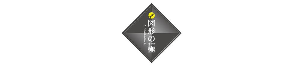図形の極ロゴ